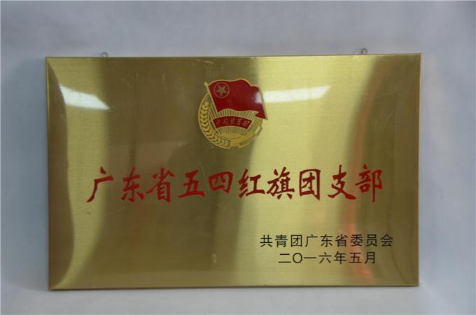 我院团总支荣获2016年度广东省五四红旗团总支